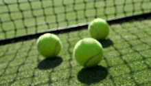 Tennis. Wimbledon